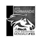 logo jeux équestres mondiaux